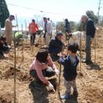 アカデミア植樹祭